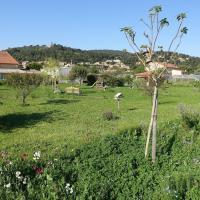 Garden, chicken coop, swing
