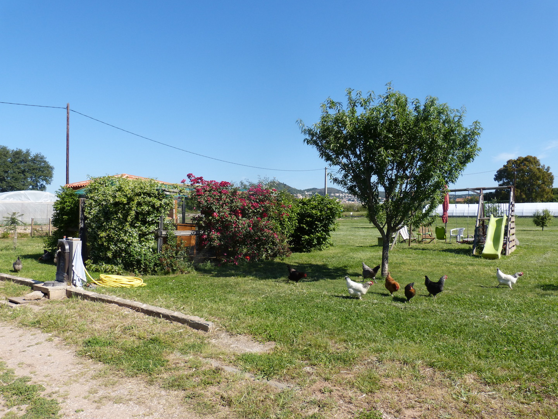 Jardin, poulailler, balançoire
